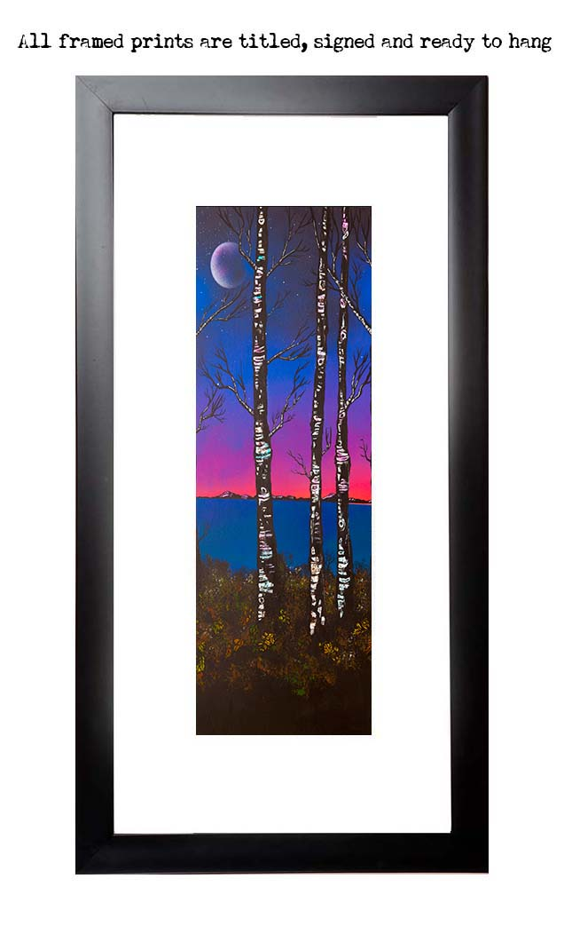 Framed print of Loch Lomond Birch trees, Scotland. crop2